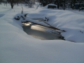 tůň v zimě 2011