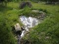 tůňka pod odvodňovacím kanálem zatím slouží výhradně bezobratlým 2012