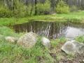 Jarní záběr první tůně po podzimním vybírání orobince